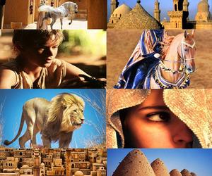 shasta, o cavalo e seu menino, and as cronicas de narnia image