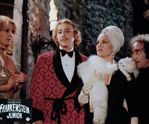 mel brooks, movie, and young frankenstein image