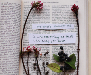 flowers, book, and quotes image