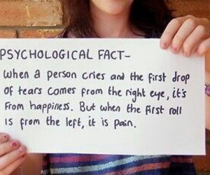 fact, tears, and happiness image