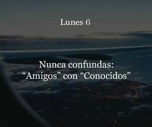 amigos, frases, and vuelo image
