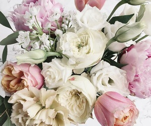 flowers, roses, and цветы image
