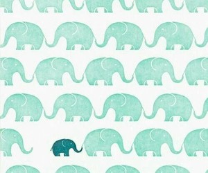 baby, elephant, and wallpapers image