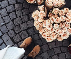 flowers, rose, and shoes image