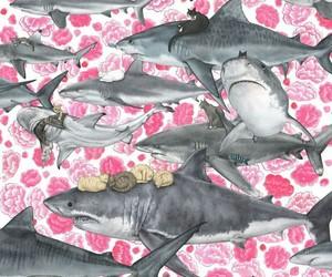 flowers, OMG, and shark image