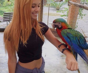 bird, girl, and macaw image