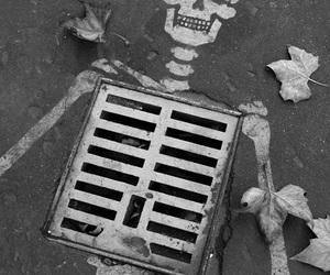 skeleton, art, and black and white image