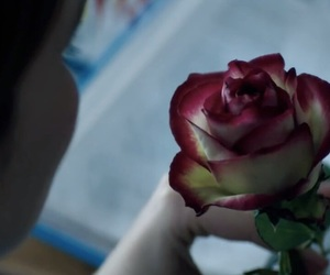 before i fall, flowers, and movie image