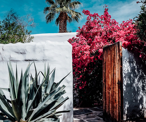 summer, travel, and flowers image