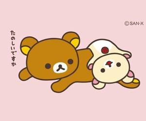 animals, bears, and cartoon image