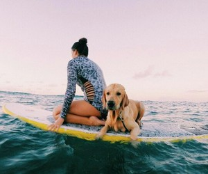 adventure, summer, and surfing image