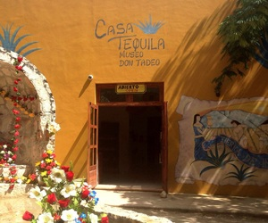 Central America, museum, and tequila image