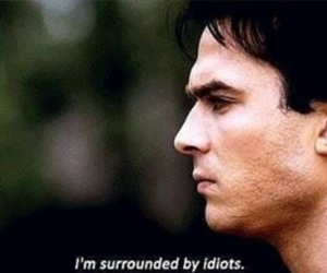ian somerhalder, idiot, and damon image