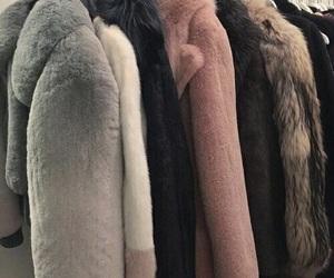 theme and fur image