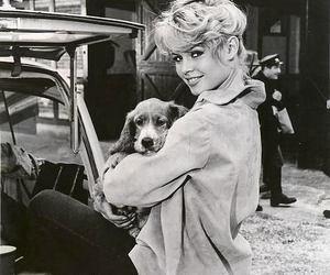 brigitte bardot, dog, and vintage image
