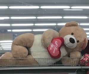 sweet, teddy bear, and cute image