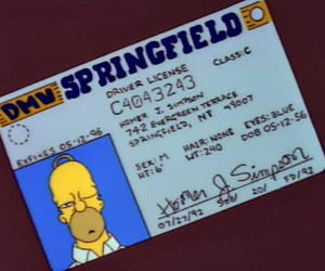 homer simpson and the simpsons image