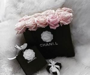 chanel, pink roses, and pink and white image
