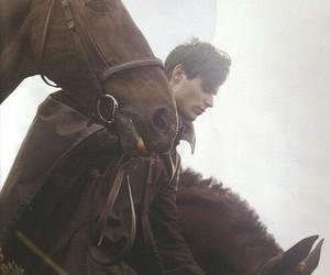 horse, fantasy, and fairy image
