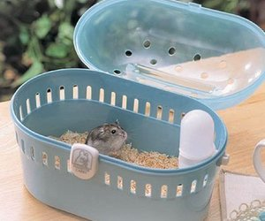 hamster cage image