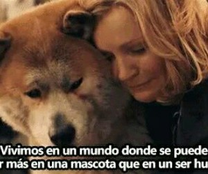 dog, frases, and movie image