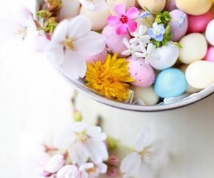 flowers, easter, and spring image