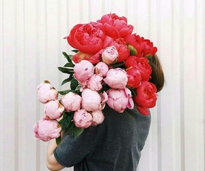 valentines day, love, and morning flowers image