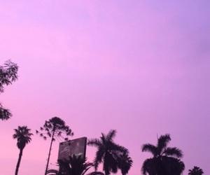 tumblr, pink, and purple image