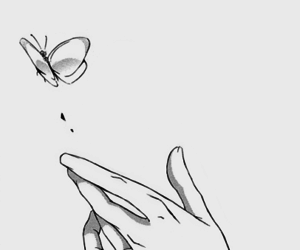 butterfly, manga, and hand image