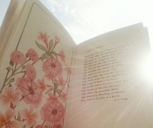 book, feed, and flowers image