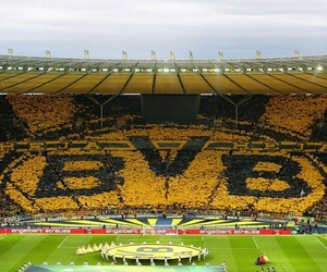 black and yellow, fans, and football image