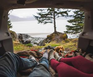 travel, dog, and adventure image