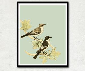 animals, bird, and couple image