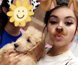 madison beer, icon, and mad image