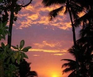 beautiful, sun, and sunset image