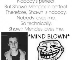 shawn mendes, funny, and perfect image