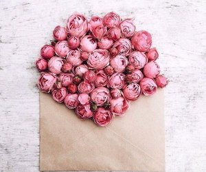 flowers, Letter, and peonies image