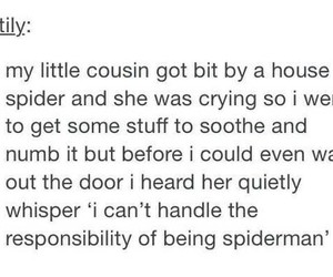 funny, spider, and spiderman image