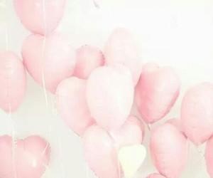 amor, rosado, and rosa image