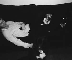 5sos, michael clifford, and dog image