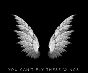 black, wings, and wallpaper image