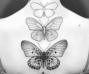 b&w, black and withe, and butterfly image