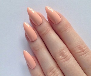 femme, girly, and nails image