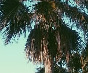 beach, vsco, and tumburl image