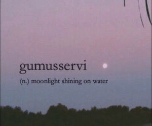 definition, moonlight, and text image