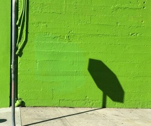 green, lime, and shadow image