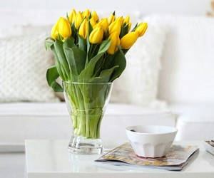 flowers, home, and tulips image