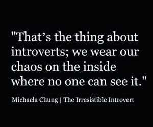 calm, chaos, and introvert image