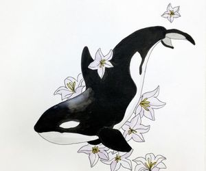 flowers, art, and killer whale image