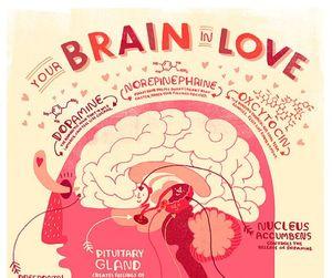 brain and love image